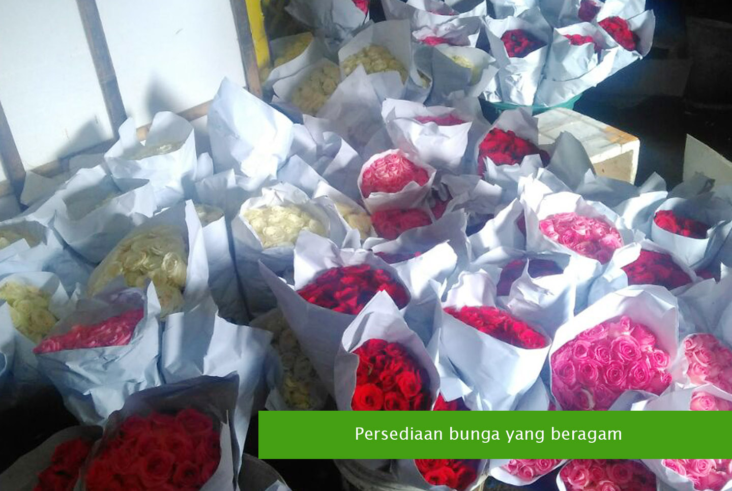 Toko Bunga Di Surabaya Terlengkap  bc01a3f425
