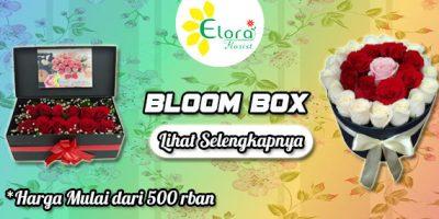 banner bloombox elora