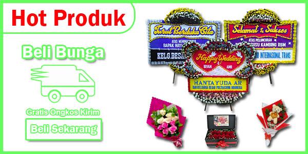 banner hot promo1