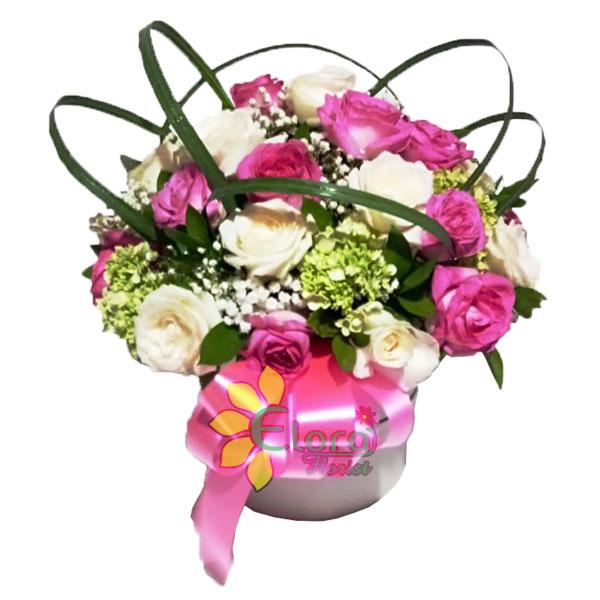 Bloom Box HBR-010